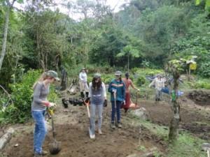 ARO Volunteers - Landscaping