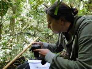 Marlena photographs each leaf and fruit for identification