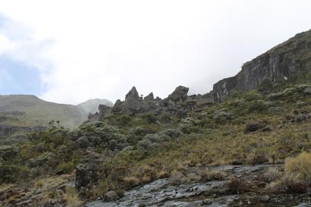 Landslide in Valle de los Conejos: Large landslides can dam rivers, preventing future erosion.  On top of Cerro Chirripó, I observed several large landslides.  Here, large blocks the size of a small house stand as monuments of a catastrophic landslide at Cerro Chirripó.