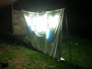 A lighted sheet set up at night to attract the moths