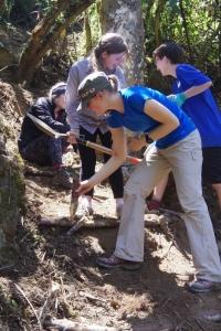 ARO volunteers working on trail steps