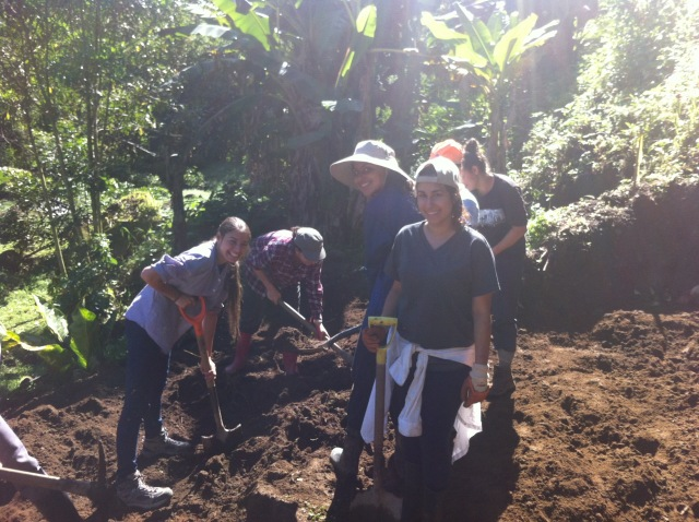 ARO volunteers levelling soil