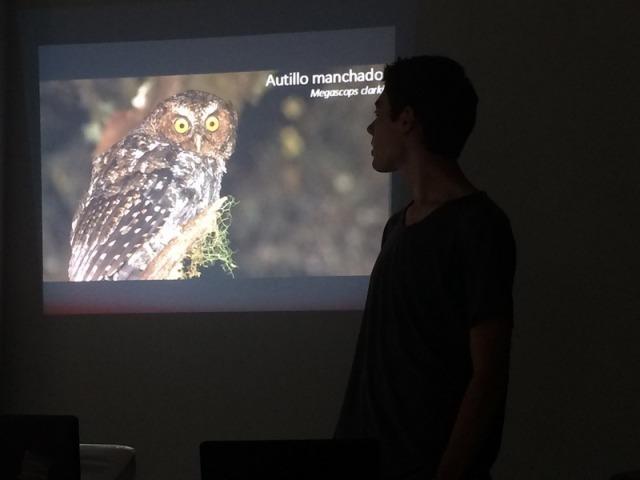 Leo, owl pres