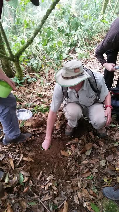 Keith demonstrating how to set dung beetle traps